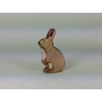 Rabbit brown standing