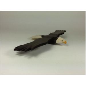 Aigle d'Amérique en vol