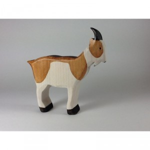 Chèvre marron blanc
