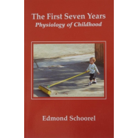 The First Seven Years